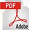 icon_pdf_large